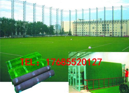 [供应]黑龙江专业足球场人造草坪批发价格