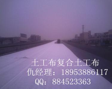 郑州钢塑土工格栅厂家+++欢迎您