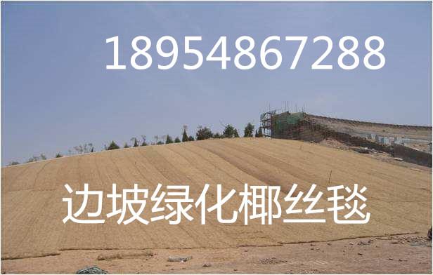 欢迎光临~东营环保植生毯股份有限公司、集团、欢迎您