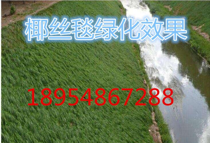 欢迎光临~温州环保植生毯股份有限公司、集团、欢迎您