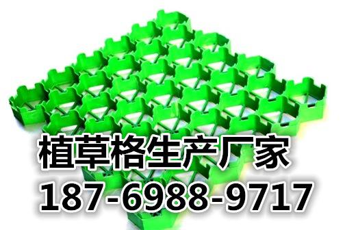 欢迎光临恩施塑料植草格股份有限公司。集团。欢迎您