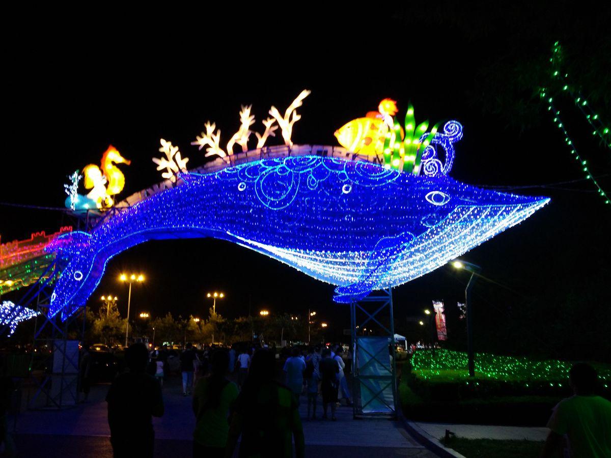 造型设计狂欢节花车巡游产品出厂即为精品  灯光展出租风靡全球梦幻