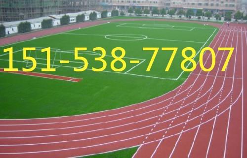 浙江学校塑胶跑道厂家销售欢迎您