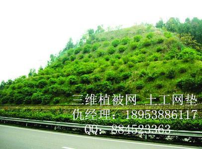 重庆钢塑土工格栅厂家+++欢迎您
