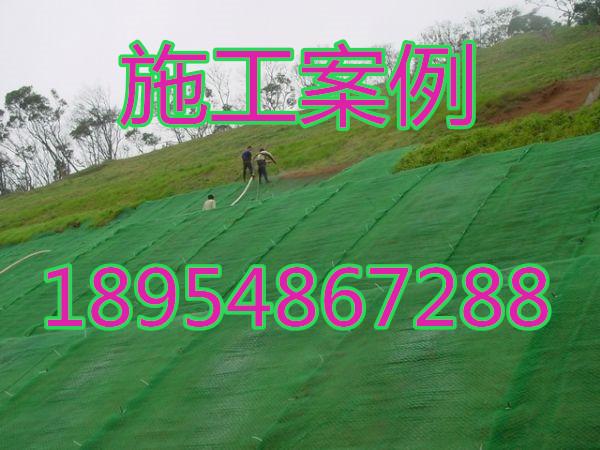欢迎光临宿迁市三维植被网垫股份亚虎国际在线娱乐。集团。亚虎国际顶级老虎机平台