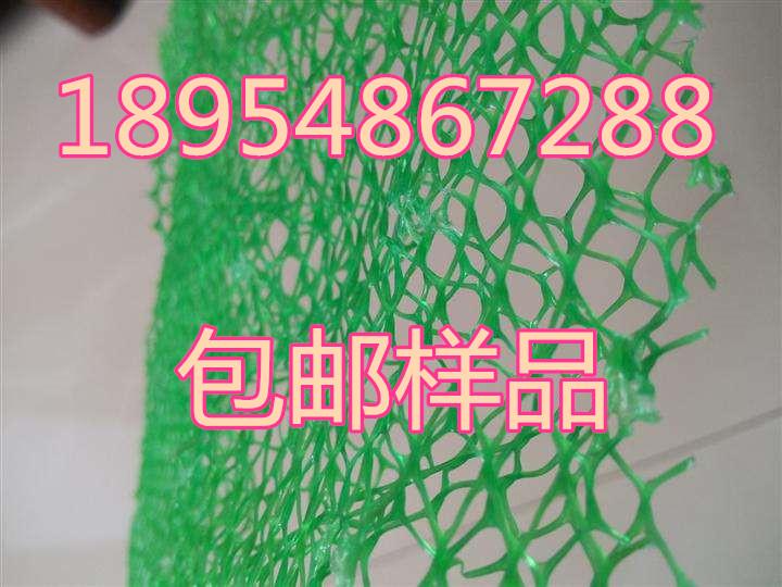 欢迎光临东营市三维植被网垫股份亚虎国际在线娱乐。集团。亚虎国际顶级老虎机平台