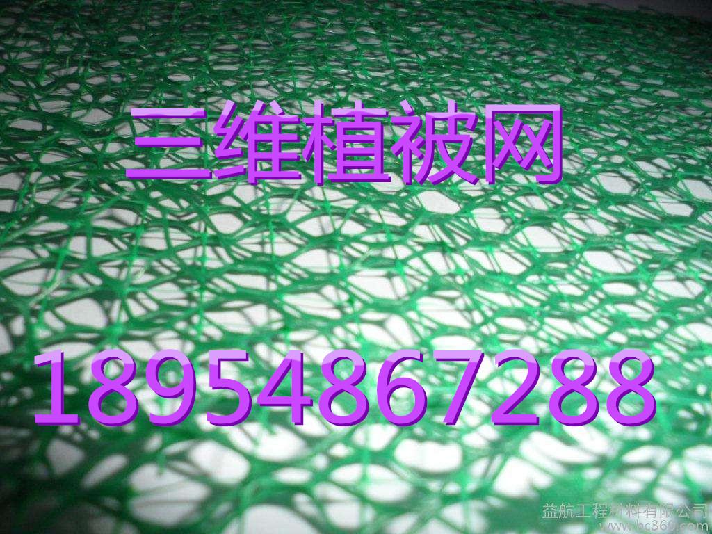 欢迎光临山东三维植被网垫股份亚虎国际在线娱乐。集团。亚虎国际顶级老虎机平台