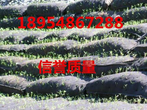 欢迎光临、桂林生态袋厂家@实业有限公司桂林集团、欢迎您