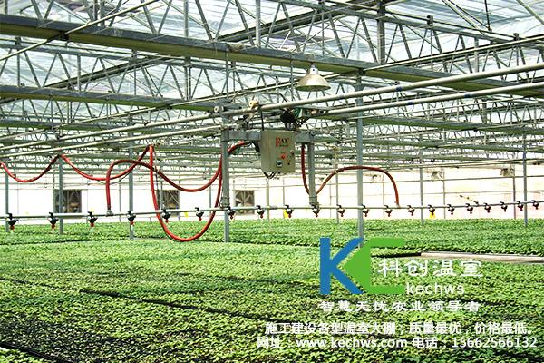 三,高温钢架大棚造价   温室大棚造价,温室大棚,蔬菜大棚  高温钢架