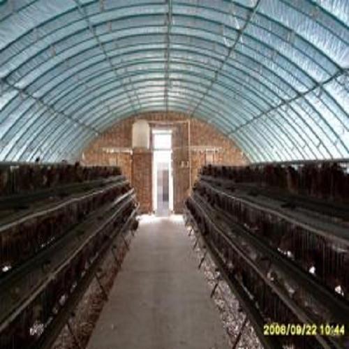[供应]鸽子养殖大棚施工-塑料蔬菜大棚多少钱一亩-安阳市欣禾温室工程